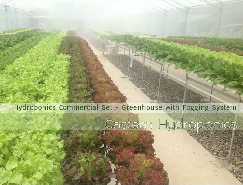 Turn Key Commercial Hydroponics
