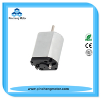 24V DC Foot Bath Motor also Application for Hair Dryer, Copy Machine, Printer (RS-360SA-8365)
