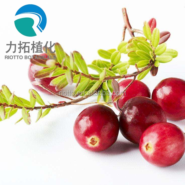 Cranberry Juice extract with Anthocyanin