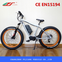 2016 most popular electric fat tire mountain bicycle,snow cruiser,ATV,beach vehicle