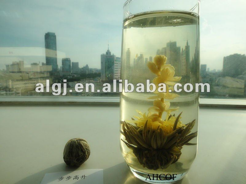 "blooming tea ""bu bu gao sheng"""