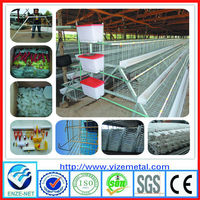 egg laying chicken farm products (manufacturer)