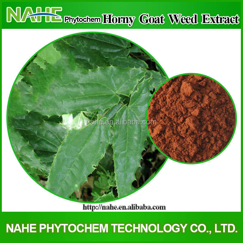100% Natural Best Quality Icariin 50% 60% 80% 98% Epimedium Extract/Epimedium Extract Powder