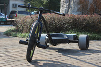 Made in China Stimulate Drift Trike /Electric Tricycle with 1000W Motor