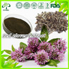 Factory supply natural Red Clover flower Extract Powder Isoflavones 80% 8% 15 % 50% hplc ISO GMP