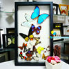 FOUSEN Nature& Art real dried preserved Mounted Butterfly ART home decorations
