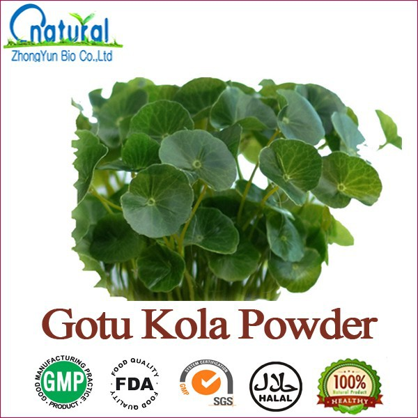 Water Soluble Total Triterpenes 70% Gotu Kola Powder