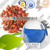 Factory Supply natural gardenia extract gardenia blue food color