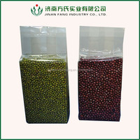 Vacuumized plastic packaging bag for food/vacuum seal food storage bag