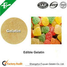 Hot Sale Edible Gelatin for Gelatin Gums/Gummy Bear/Candy Gelatin Powder