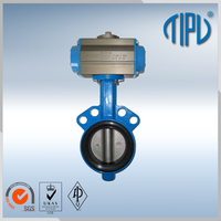 China supplier wafe rmotorized butterfly valve dn250
