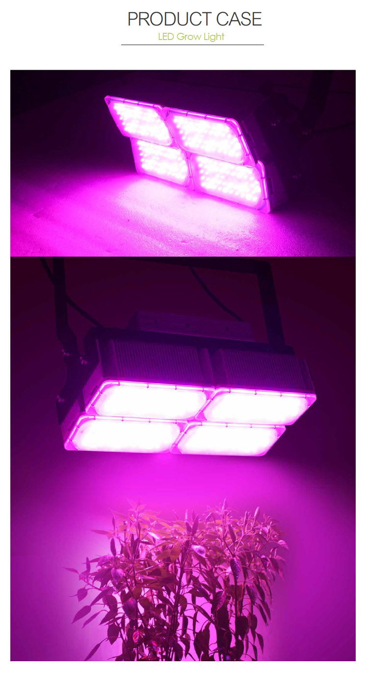 ETL approved factory price 400W led grow lights 3-5 years warranty for hydroponic plants