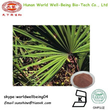 Saw palmetto fruit P.E10 1 /Fatty Acids Saw Palmetto Extract /sabal extract Powder