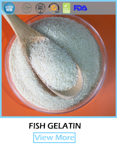 halal certificated edible glue hide gelatin