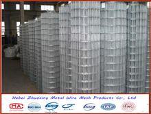 China supplier direct sales 1/2, 1 inch, 2 inch welded wire mesh
