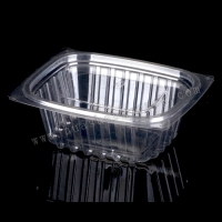 Clear PET Plastic Food Container with lid