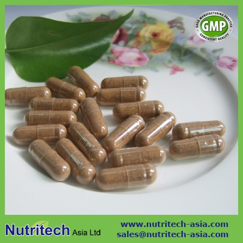 GMP Certified oem contract manufacturer Maitake Mushroom Extract Capsules in bulk