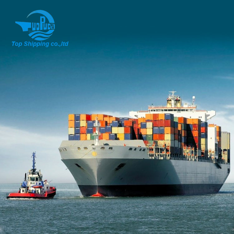 Jordan Shipping forawrder Ocean freight from China to Rotterdam Netherland by LCL
