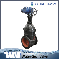 Double Flanged Industrial Cast iron Gate Valve