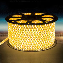 high quality Waterproof SMD5050 Tape AC220V Flexible Led Strip 60 led Outdoor Garden with EU plug
