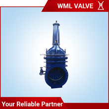 Cast Iron Rising Stem Wedge Double Disc Gate Valve Z42W