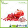 /product-detail/fresh-pomegranate-juice-bulk-pomegranate-extract-391329825.html