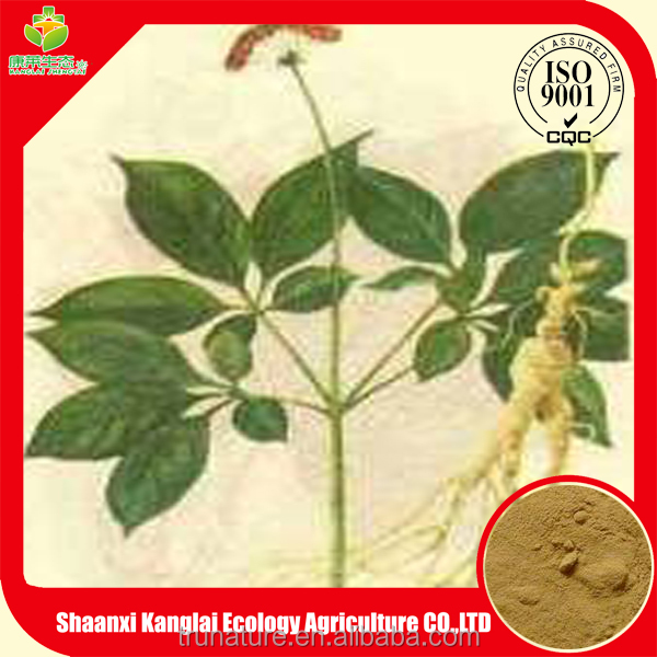 Chinese panax ginseng leaves extract powder is on sale now!