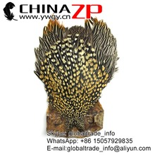 ZPDECOR Wholesale in Stock Top Grade Natural Gold Jungle Cock Cape Complete Pelt with Feathers