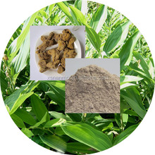 Solomon's seal plant extract/Polygonatum sibiricum extract powder Herb medicine Sealwort for anti-aging