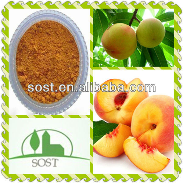 2013 Hot Sale And Price Peach Seed Extract Powder