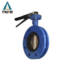 China TKFM high quality api lug face to face butterfly valve diagram
