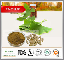 High Quality Ginkgo Biloba Leaf Extract Powder in Bulk