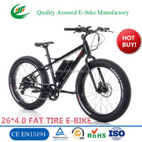 48V 1000w electric mountain bicycle,snow electric bike, sport e bike (TDE12Z)