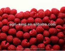 China wholesale 2016 new crop IQF frozen raspberry for export