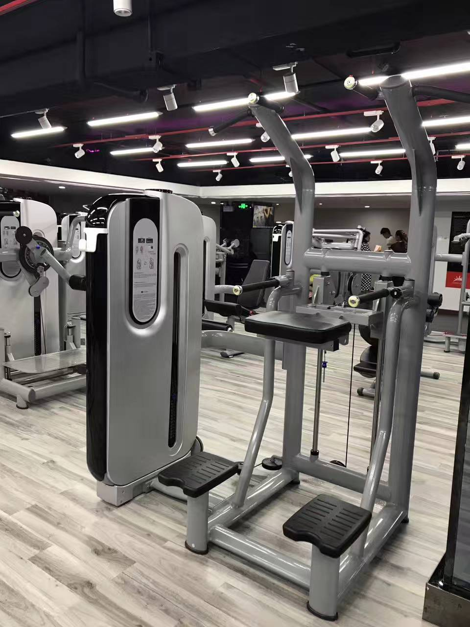 Big Promotion on Fitness Equipment New Design Italian Assisted Dip/Chin Matrix Exercise Machine
