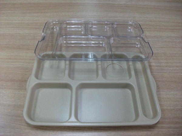 Eco-friendly Disposable Lunch Tray