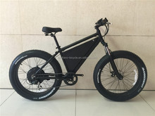 Latest professional 48V 2000W fast speed powerful Fat tire electric bike