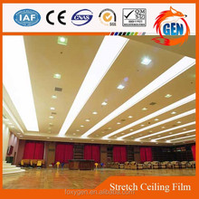Project recycled 3d digital ceiling film decoration with 15-year warranty for swimming pools