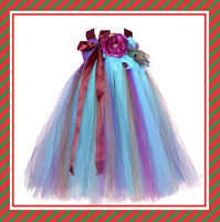Peacock designer one piece party dress Christmas Halloween tutu dress 12 year girl without dresses