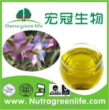 Bulk natural borage seed essential oil for female health care products