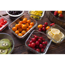 Heat Resistant High Borosilicat 2 Compartment Lunch Box With Locking Lid