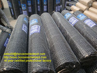 Look!!! 2013 Direct factory sales!!! Hot galvanized hexagonal wire mesh nets 16-year professional factory