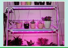 Germany Quality India price Wholesale 20w led grow tube T8