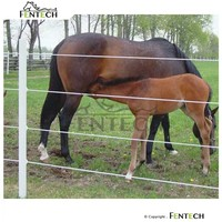 Fentech High Strength Electric Wire , Horse Fence