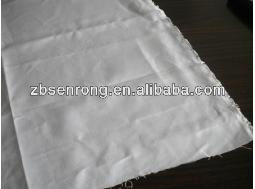 PTFE Scrim/ basic fabric/substrate