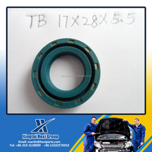 Free Sample Sealing High Abrasion Resistance oil seal for 17*28*5.5 NBR,FKM,Viton, SI,TC,TB,DC oil seal