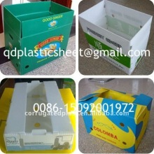 Folding Corrugated Plastic Fruits Storage Boxes