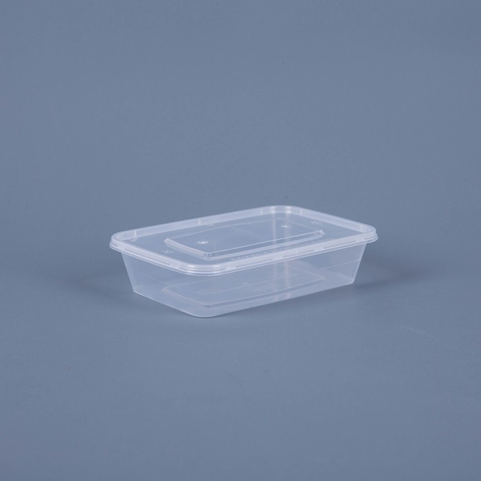 Custome size disposable food plastic box container