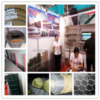 China Xinao factory Hexagonal wire netting/chicken wire/rabbit fence