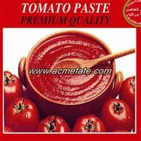 Chinese Delicious Tomato Paste in Sauce